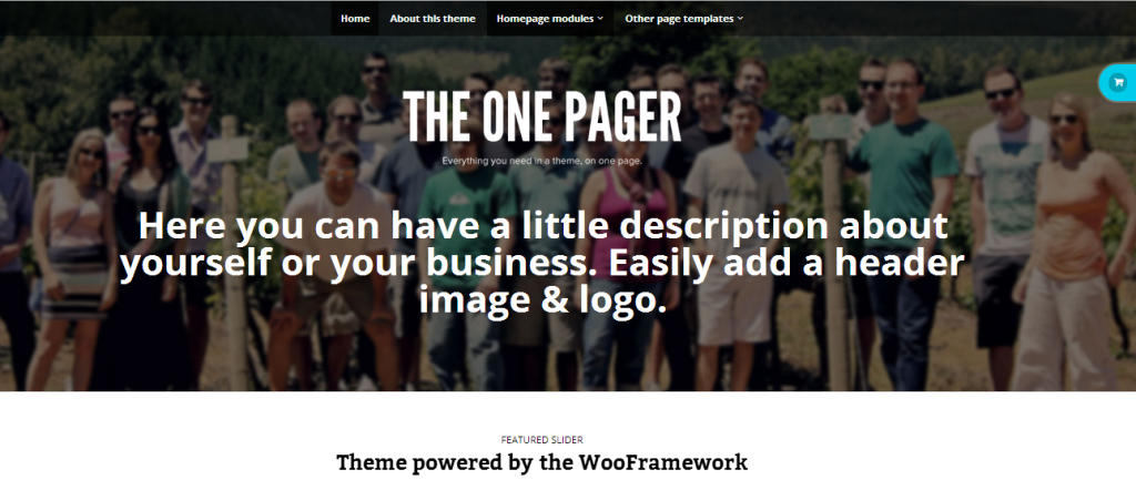 TheOnePager1