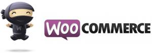 best-WooCommerceplugins-logo